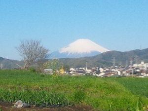 神奈川県伊勢原市-2